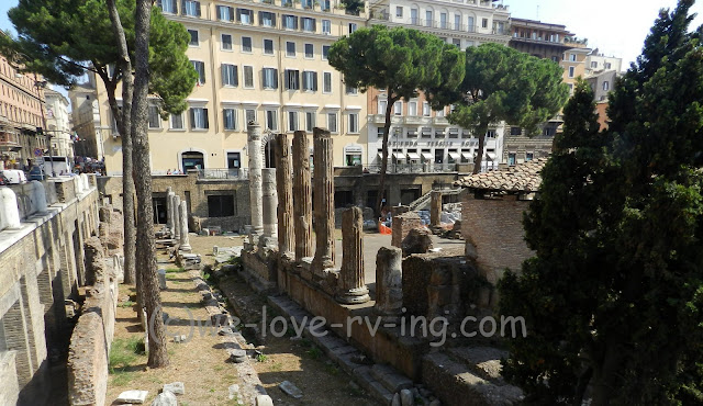 looking down into the ruins of the Largo di Torre Argentina