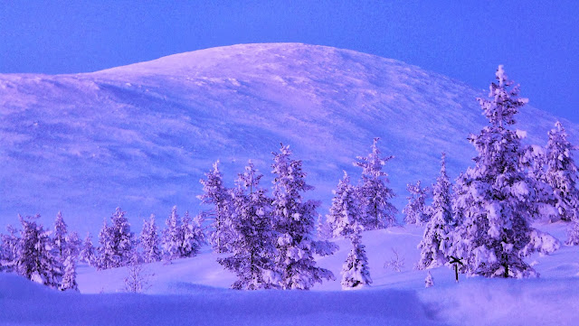 Twilight hours in Lapland. Photo: WikiMedia.org.