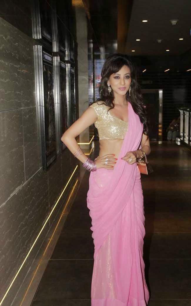 Vedita Pratap Singh In Saree