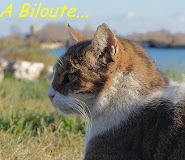 A notre Biloute...
