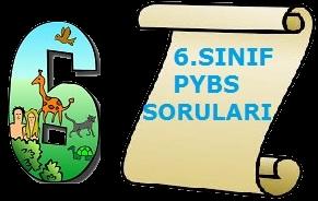 6.SINIF PYBS MATEMATİK SORULARI