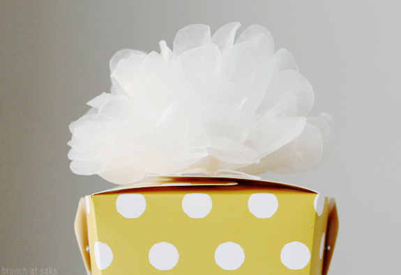 One fine day nice package for Do it yourself pom poms