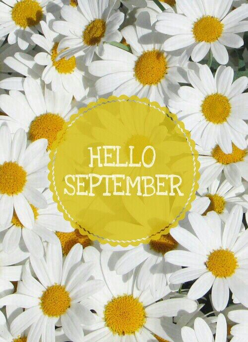 Hello September Flower Picture