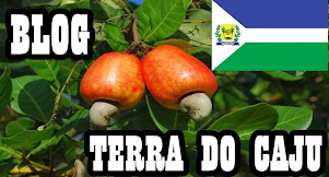 Blog Terra do Caju