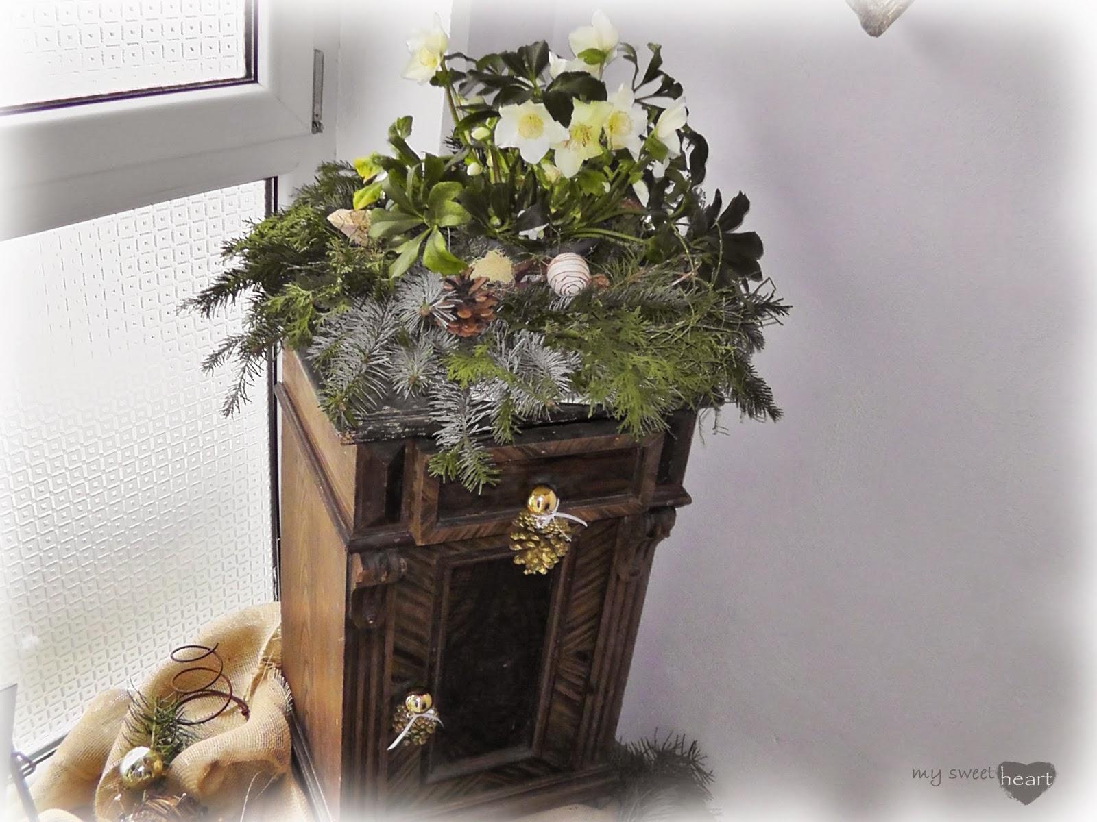 Weihnachtsdeko christrosen frohe weihnachten in europa - Billige weihnachtsdeko ...