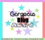Gorgeous Blog Award