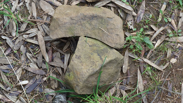 rock shaped like pac-man