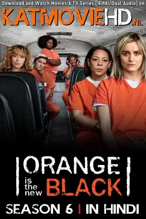 Orange Is the New Black S06 All Episode [Season 6] Complete Dual Audio[Hindi+English] Download 480p