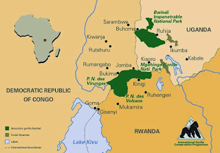 Mountain Gorillas Range