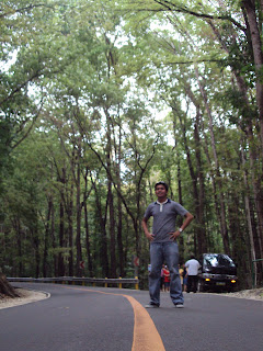 Bohol Manmade Forest_03