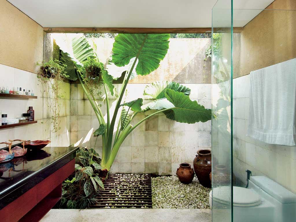 rumah minimalis nuansa alam
