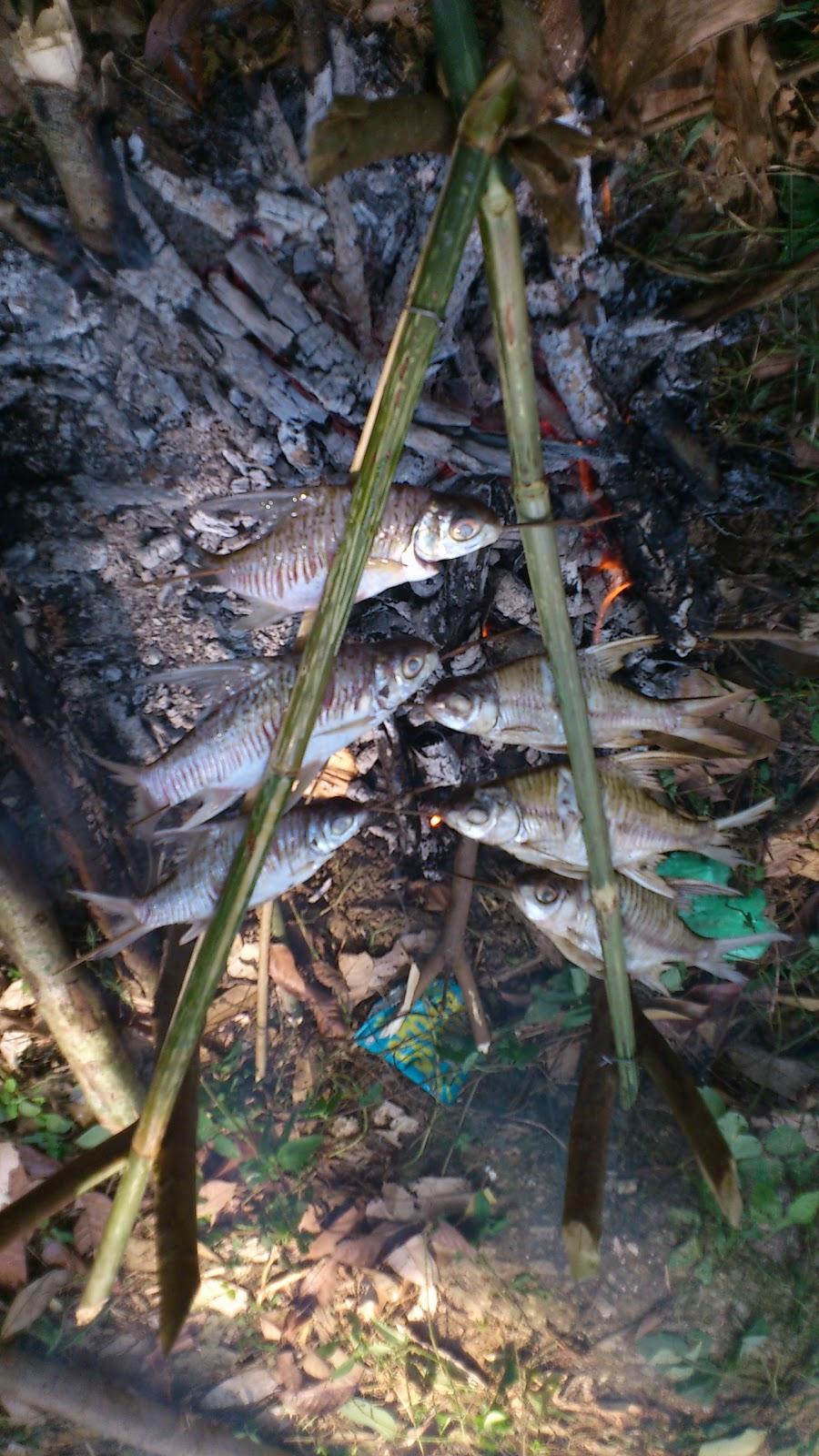 arjunapopkorn.blogspot...