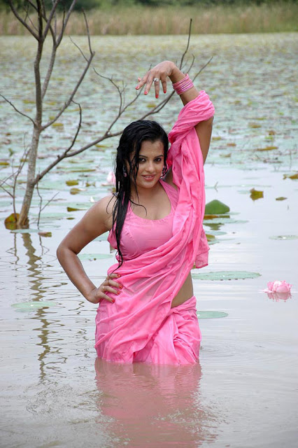 Wet malayalam actress in sari photos