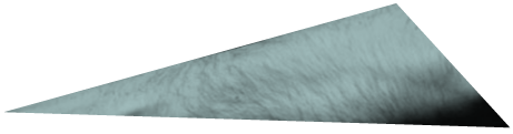 Forearm top