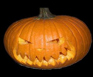 Jack-o-lantern Pumpkin carved for Halloween