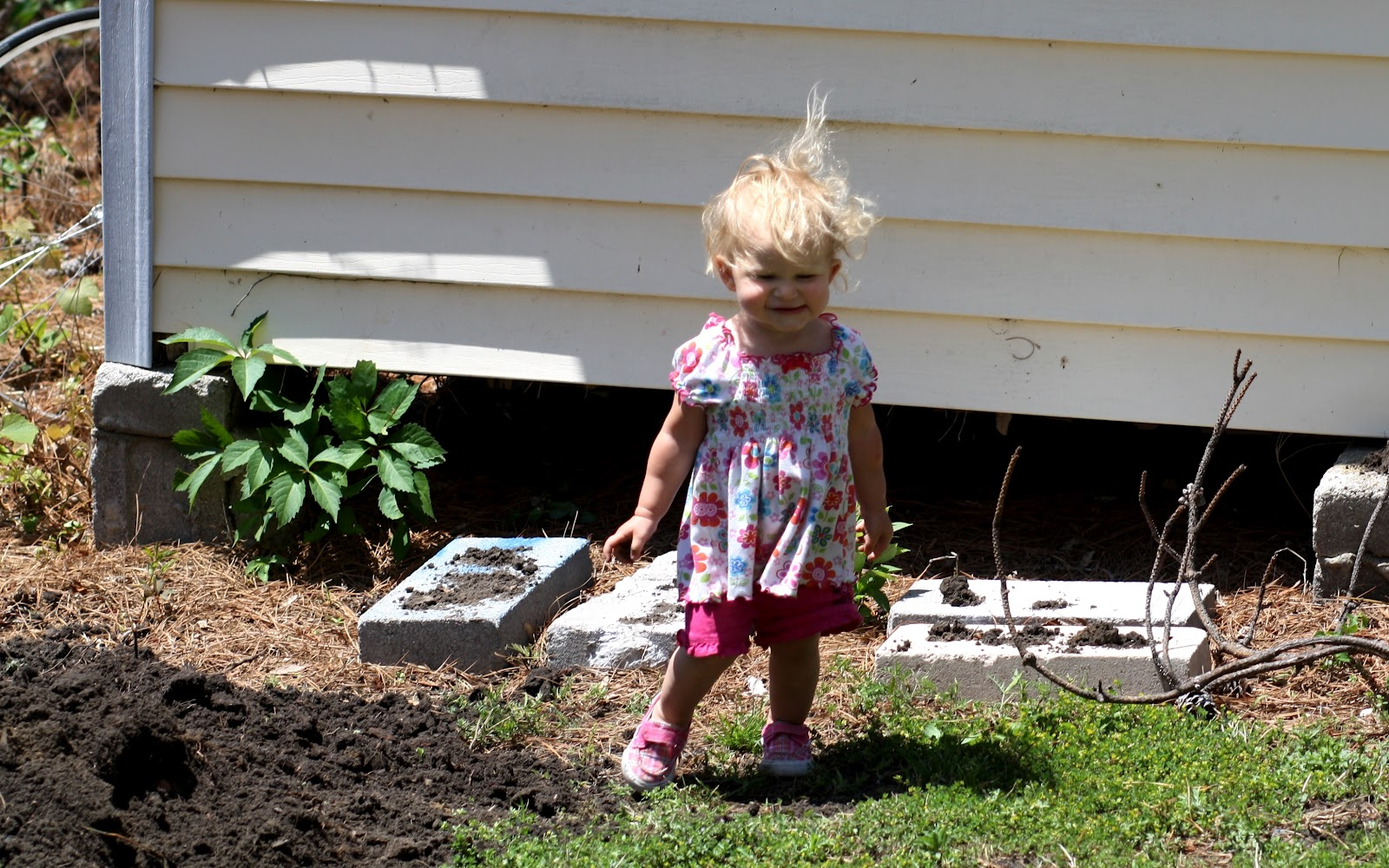 candid catholic living how to build a backyard garden bed