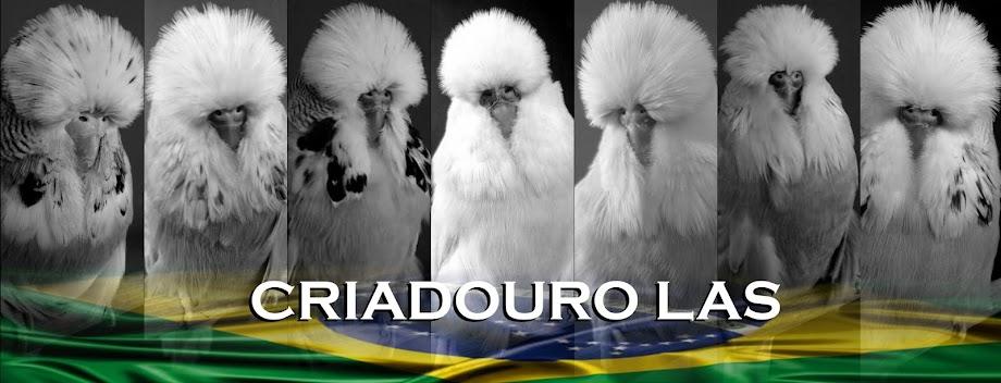 CRIADOURO LAS