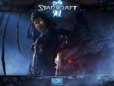 #46 Starcraft Wallpaper