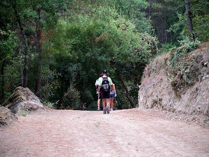 Entrant al Bosc de Vilagonella