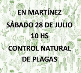 CONTROL NATURAL DE PLAGAS EN CACTUS Y SUCULENTAS NC TOCANDO LA FOTO TODA LA INFORMACIÓN