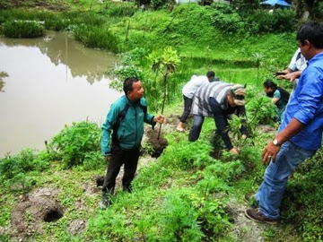 Mirik BDO officials planting tree saplings around Mirik Lake on Thursday