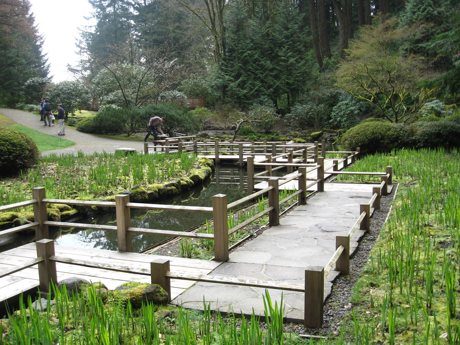 Seattle japanese garden community blog a visit to for Japanese garden bridge