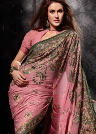 Fashionable Indian Net Saree