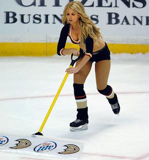 Hockey Cop Archives: The Anaheim Ducks Power Players