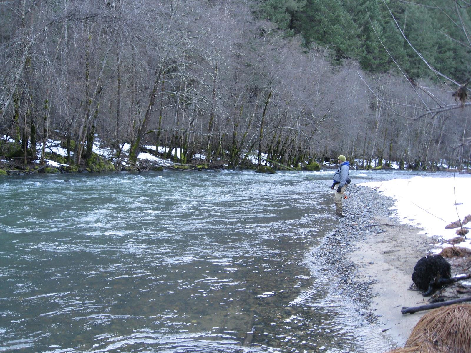 Western sierra fly fishing february 2012 for Sierra fly fishing