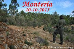 MONTERÍA 10-10-2015