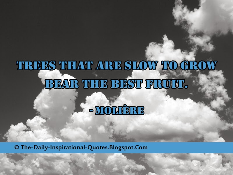 Trees that are slow to grow bear the best fruit. - Molière