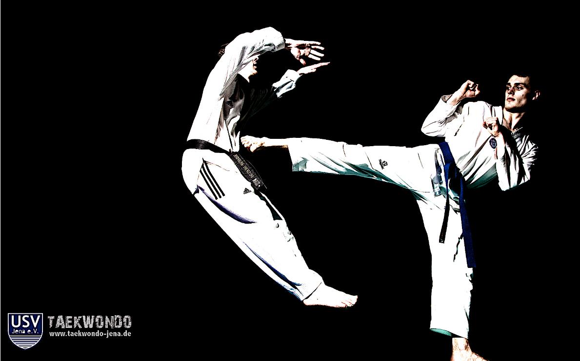 Taekwondo   Page 5
