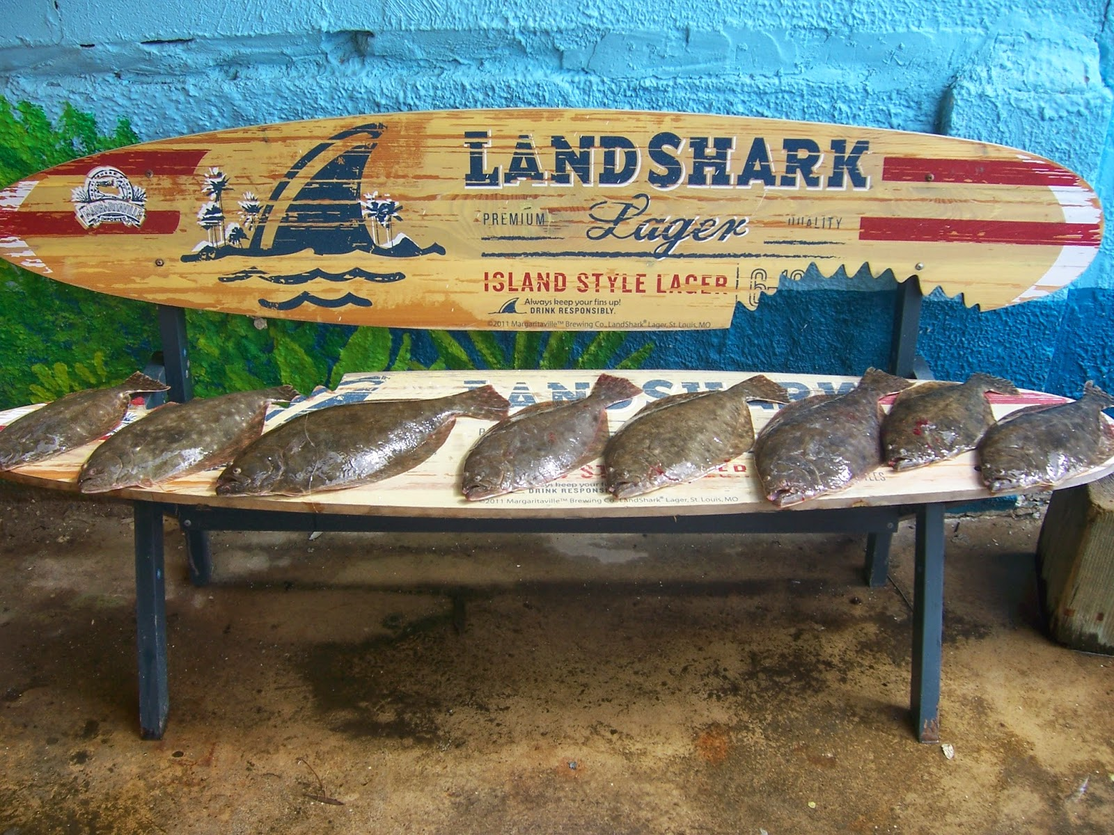 Galveston fishing report galveston fishing charter company for Galveston fishing report seawolf park