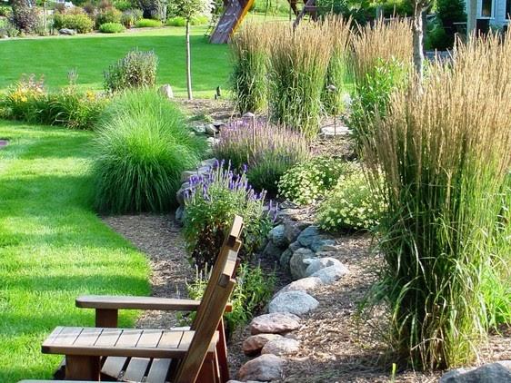 1000 images about landscape ideas on pinterest gardens for Ornamental prairie grass