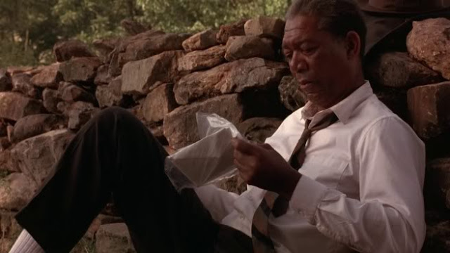 a review of frank darabonts film the shawshank redemption Tim robbins and morgan freeman appear in a scene in the castle rock film the shawshank redemption by frank darabont, finds the review shawshank.
