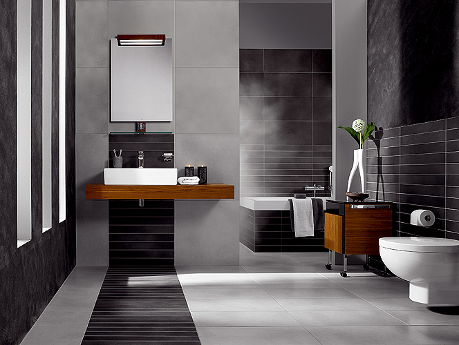 Decorar Un Baño Moderno:Cómo Decorar un Baño Moderno : Decorar Casa y Hogar
