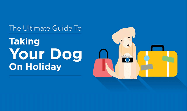 The Ultimate Guide to Taking Your Dog on Holiday