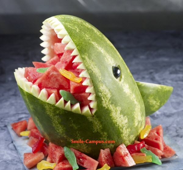Amazing Food Animal