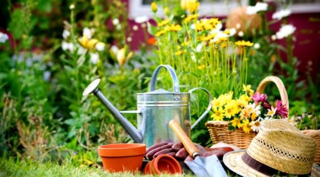 Projetos Paisagísticos Flower Garden