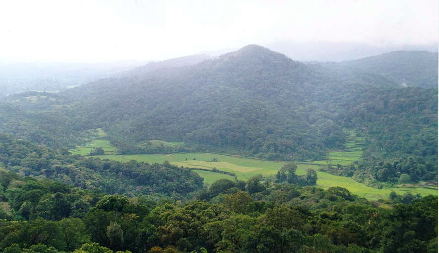 Coorg tourism places to visit in coorg coorg india for Country plans com