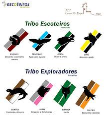 Patrulhas e suas cores: