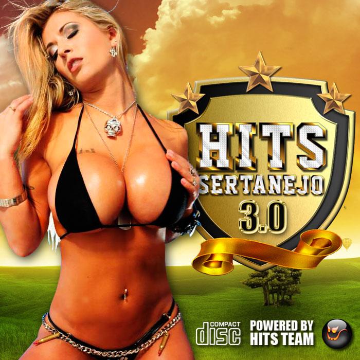 Hits Sertanejo - 3.0 - As Melhores de 2011