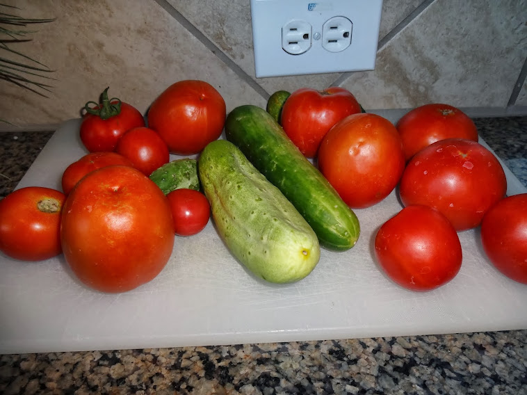 Home grown tomatoes and cucumbers