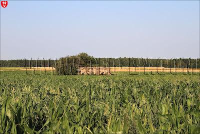 Первый бункер у деревни Ольховцы. Последний снимок этих позиций