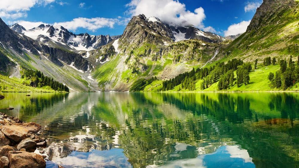 En Güzel Hd Doğal Yaşam Görüntüleri