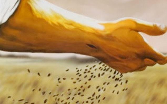 você é um instrumento do Pai, plante uma semente no coração do teu próximo