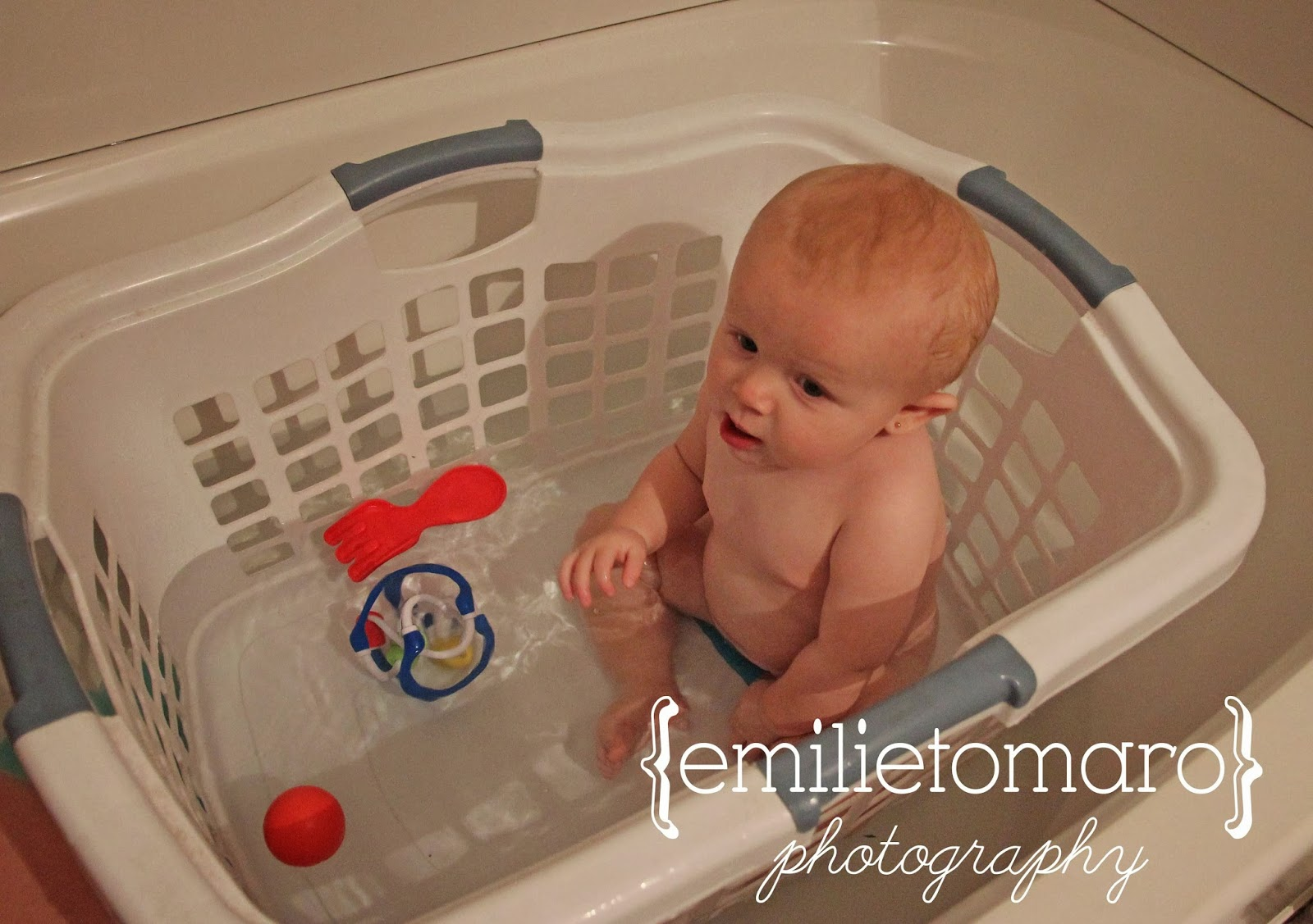 Emilie Tomaro Photography: {Thank You Pinterest...yet again}