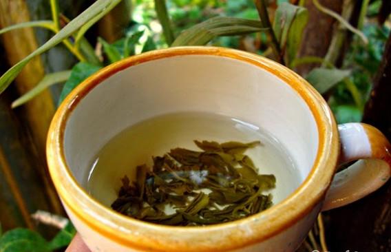 Dùng trà xanh và nầu nước sữa mặt
