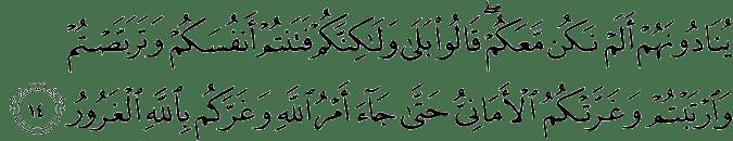 Surat Al Hadid Ayat 14