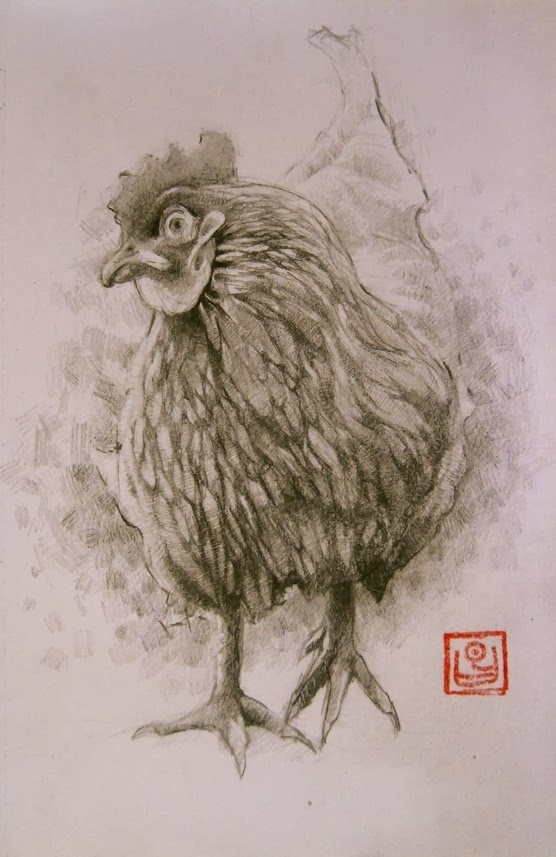Pencil sketch of a chicken by kevin gough